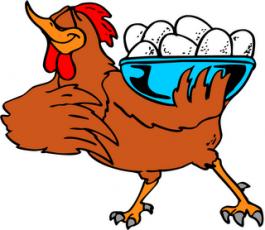 Chicken_-_Cartoon_08.4172803_std